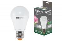 Светодиодные лампы - A60, A65